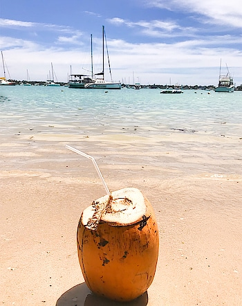 ~ Coconut water 🥥💓 . . . . . . #mauritius #holidays #beach #coconutwater #fashion #roposo #picoftheday #gorgeous #love #summervibes #cute #beauty #beautiful #lifestyle #blogger #bblogger #topblogger #lifestyleblogger #beautifuldestinations #island #paradise