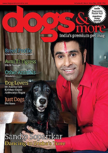 'Dancing to Zorba's Tune'.. My lady love Zorba and me on the cover of India's premium pet magazine... @dogsnmoremag   🙏💐💐.. Thk you @contractorfarzana  for having us grace the cover.. what a lovely start of new year.. 🕺🏻🕺🏻🕺🏻..   Pls grad a copy.. various stories inside are super cute and very informative.. #loveanimals #lovedogs #dogsofinstagram #dogs #animallovers #dogsnmore #magazine #magazinecover #lovered #blackdog #care #petcare #mypooch #dance #zorba #sandipsoparrkar #roposoday #roposoandall #loveroposo