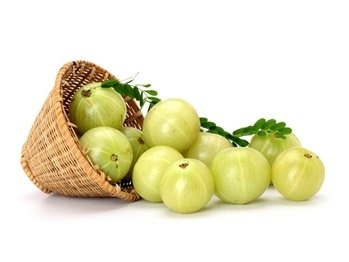 Indian gooseberry ( Amla )