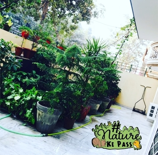 Gardening goals 🌿 #NatureKePass