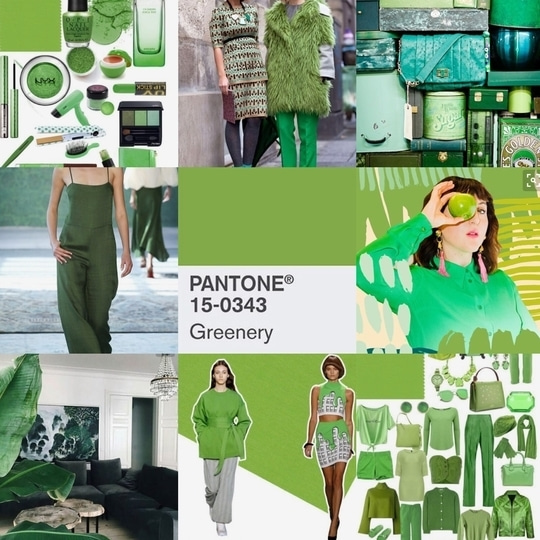 With PANTONE declaring it's colour of 2017: Greenery ☘️, it will be interesting to see how fashion runways will get inspired from this. I think we'll get to see a lot of this colour in outfits and accessories in the coming season. Go Green 💚 #FreshFashion #KeepItFresh #fashionforecast2017 #roposo #roposocontest #roposotalk #fashionblogger #NaghmaRizwan @roposotalks @roposocontests #pantone #pantone #pantone2017 #pantone2017 #greenery #green