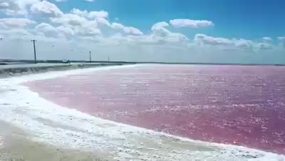A Very Beautiful Pink Waters.  ☀ ▪Tag Someone You'd Like Go With 😍!! ☀⚊⚊⚊⚊ ▪↪Go To Follow @eourh for other amazing photos and Videos 😊!!⚊ ⭐ ⭐ #eourh ⚊⚊⚊⚊ #exploreeverything #roposolove #mothersnature #traveladdict #nature_perfection #ourplanetdaily #worldcaptures #niceview #explorer #adventures #adventuretime #earth #adrenaline #traveling #travel #traveligram #travelphotography #sightseeing #tourists #watercolours #traveller #love #party #nature #window #house #paradise #incredible #roposo #style #friend #roposostylefiles #soroposo #forest