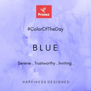 The color of Serene, Trustworthy & Inviting! #Blue is #Prisma #ColorOfTheDay  #CelebrateColors #LovePrisma  Prisma #ShadesOfBlue Jeans Blue . Aqua Blue .  Peacock Blue . Marine Blue . Happy Shopping @ http://www.myprisma.in #BrandPrisma #HappinessDesigned
