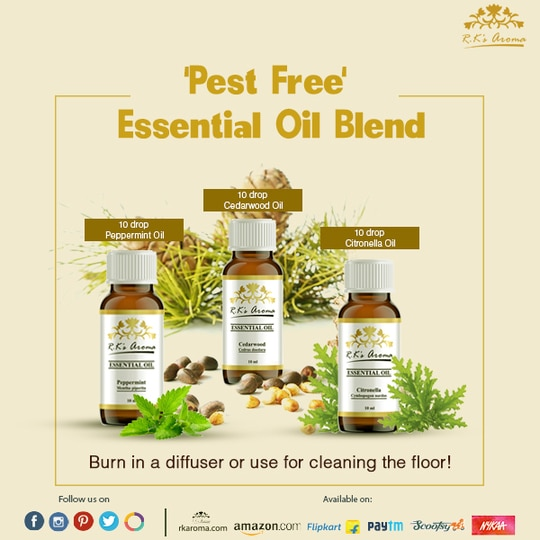 Keep monsoon's notorious pests out of your home with these natural Rks Aroma essential oils!