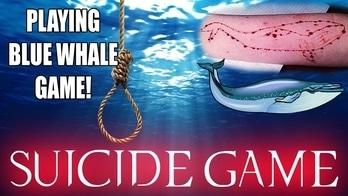 #socialmedia  'Blue Whale Challenge' Urges #Teens To #Commit #Suicide  Read: goo.gl/4jdUPN  #News #videocitylive