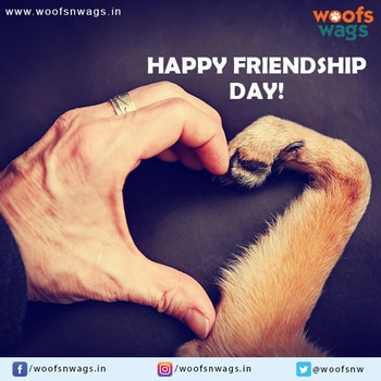 Dogs, once they love, they love steadily, unchangingly, till their last breath.  Happy Friendship Day !   #doglove #friendshipday #friends #dogfriends #love #life #fun #dogourbestfriend #dog #woofs #woofsnwags #bestfriends #bestbuddy