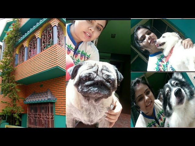 My first vlog..my house..meet my pets..uma vlogs