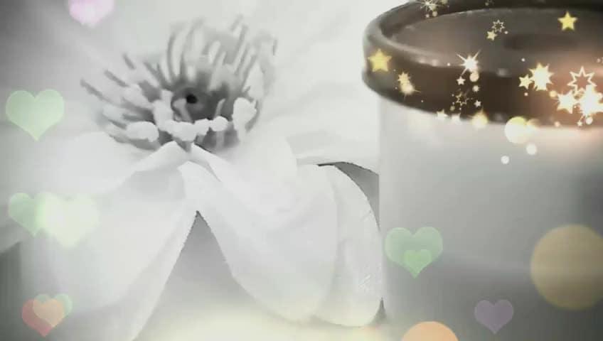 say bye bye to ur dark circles with this magical eye cream - do check this video. Click on the link https://youtu.be/4bWVBbbM-RI   #darkcircles #naturaleyecream #magicaleyecream #naturalhomeremedy, #naturalwayofremovingdarkcircles, #fineline #wrinkles #youtuber #howtoremovedarkcircles #howtogetridofdarkundereyes