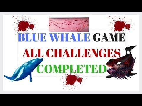 BLUE WHALE GAME ALL LEVELS COMPLETED PARODY HINDI | SUICIDE GAME🐠 🎮 😡