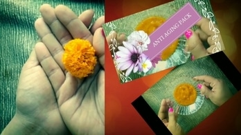 This Diwali Use Marigold Face Pack for Clear And Bright Skin  #marigoldfacepack #facepacks #skincareroutine #skincareblogger #antiaging #skinglow #skincaretips #skinfacepacks #antiwrinkle #removefinelines #youngskin #youngerskin #youtthfulskin #fairness #skinlightening #skinlighteningfacemask #indianyoutuber #youtubecreators #youtubecreator #youtubevideos  #naturalskincare #pimples #removeacnefast #removeblemishes #removesuntan