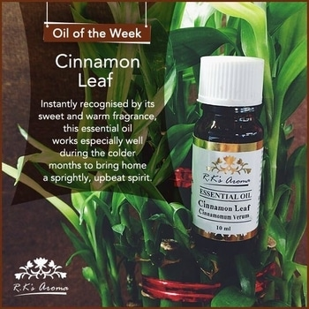 Bring home the cheer and good vibes with our #OilOfTheWeek – R.K's Aroma Cinnamon Leaf essential oil!