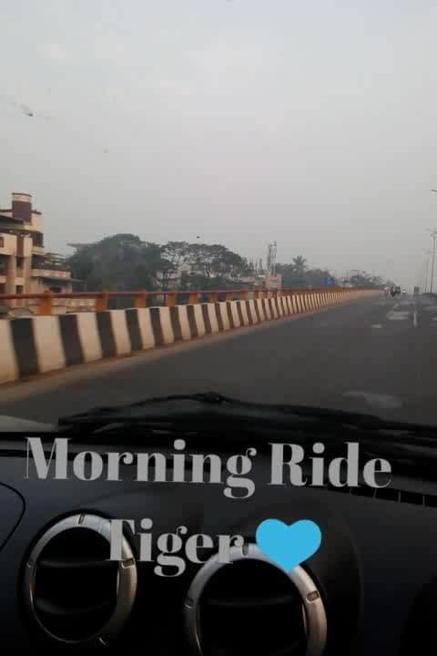 #bikeride #bikeriders #triumph_india #triumphtiger #ride tiger #tigertriumph #triumphbike #morningride #goodmorningpost