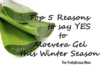 Aloevera is a wonder plant in terms of skin care and hair care. It also treats sunburns and soothes small cuts or wounds. Also, it is found in the ingredient list of so many of skin care and hair care products and cosmetics. Aloe Vera has too many of health benefits as well. Aloevera gel can be used in winters as well and that too very effectively. Click the link to know my top 5 reasons to say yes to Aloevera gel this winter season too: http://theprettyliciousmess.blogspot.com/2017/11/top-5-reasons-to-say-yes-to-aloevera.html . . . . . . . . . .. . .  .. . . . . . . . . #firstpost #roposo #prettylicious #theprettyliciousmess #aloevera #aloeveragel #ilovewinters #roposomic #blogger #beauty #followme #roposogal  #bblogger #beautyblogger #indianbeautyblogger #newblogger #bloggerdiaries #skincare #skincaretips #skincareblogger #beautytips #ropo-beauty #bloggergirl #fbloggersindia
