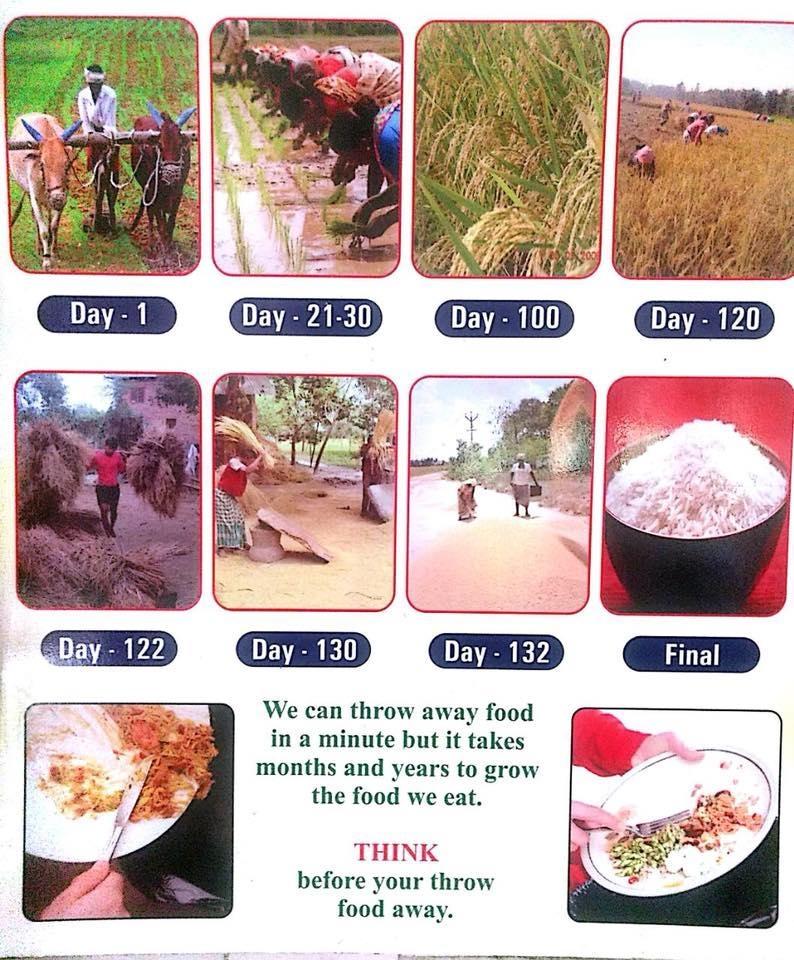 Respect food Dont waste it #savefarmers #nationspeaks