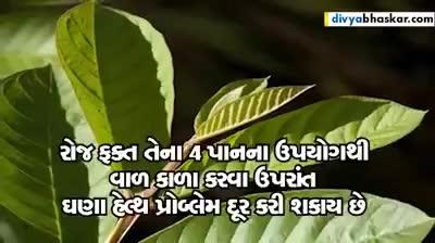 Safed Waad Ne Kado Karwa No Nuskho #Gujarati #Rangoli #lookgoodfeelgood