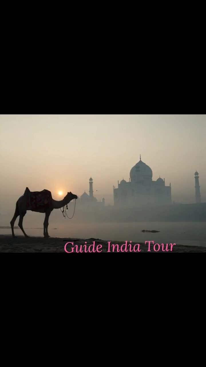 Beautiful click #guideindiatour #agra #agrafort #agradiaries #triptoagra #tour #tourism #photography #tajmahal #wonders
