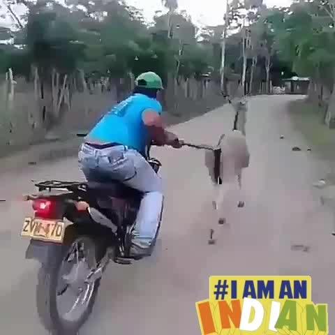 #indian #running #trendingfashion #funnyvideo #iamanindian