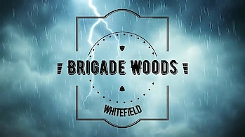Brigade Woods Whitefield @http://www.brigadewoods.net.in #BrigadeWoods #Whitefield #Apartments #Flats #RealEstate #Youtube #Video #prelaunching  Bookings - http://www.brigadewoods.net.in/contact.html