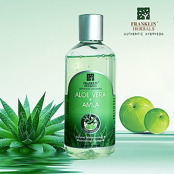 Franklin Herbals 'Aloe Vera and Amla Shampoo' enriched with #Reetha and #Shikakai, helps control de-colouration of #hairs & useful in #cooling , #nourishing, purifying, preventing dry scalp & flakes,  also rejuvenates hair growth and much more..  Shop Now: https://bit.ly/2FlaPWd  #franklinHerbals #sunnydays #gel #amla #shampoo #scalp #hairlove #hebalshampoo #naturalcosmetics #naturalcare #hairgrowth #summersessential #aloe #vera #herbal #herbals #summer #summertime #herballife
