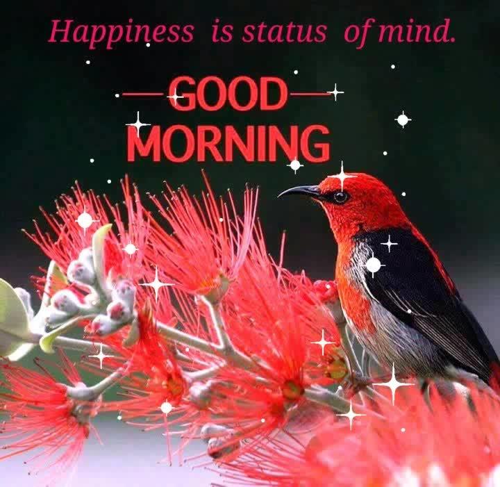 #goodmorning #haveaniceday #glitter