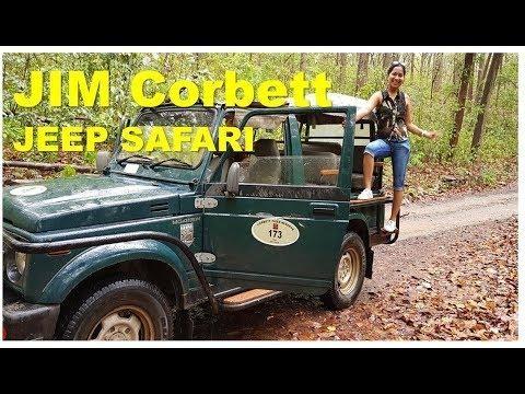 Jeep Safari in Jim Corbett - Elephant Tiger #jimcorbett #junglesafari #jeepsafari #tiger #placestovisitneardelhi #incredibleindia