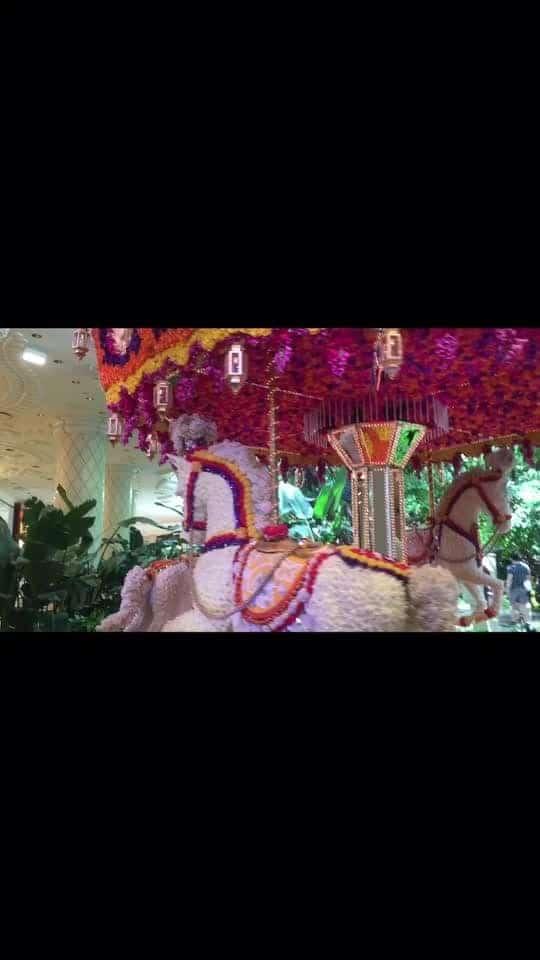 #throw🔙#lasvegas#wynn#realflowersused#amazing#beautifulcart#missthosedaysinvegas#lovetobevisitagain#lasvegas#usa