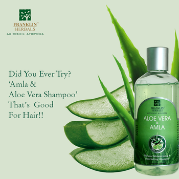 This monsoon, are you worried about hairfall and damaged hair?  Just use Franklin Herbals '#Amla & Aloe Vera Shampoo' formulated with the old age goodness of #Amla, #Reetha, #Mehandi & #Neem.  Promotes hair growth  Strengthens hair roots  Shop Now: https://bit.ly/2FlaPWd   #franklinHerbals #gel #shampoo #scalp #monsoon #aloevera #hairlove #hebalshampoo #naturalcosmetics #naturalcare #hairgrowth #summersessential #aloe #vera #herbal #herbals #summer #monsoontime #herballife