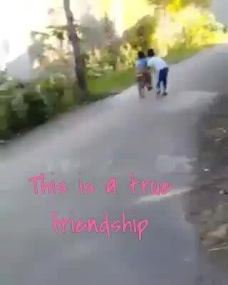will you like pls share  #hahatv  #funnyvideoinhindi  #followme  #like4followers  #amazing  #laughter  #liketkit  #dollupandtakecare  @bmps