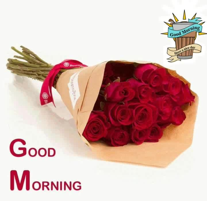 #dailywisheschannel #goodmorningpost #goodmorning