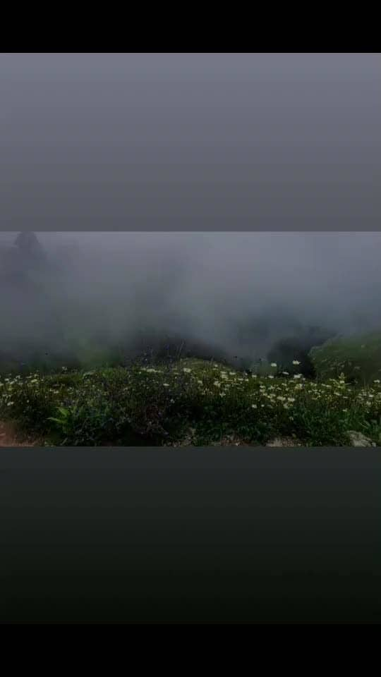 Watch the full video of my Dalhousie trip on #youtube. Link in bio 👆🏼. Also check out my itenary in the description below the video. Holler if you need any more details & Don't forget to give thumbs up 😀👍🏼!! #theindianwanderess #TIW #postavideo #begginer #indiantravelblogger #himachal #dalhousie #chamba #video #travelindia #indiavideos #roposovideo #soroposolife