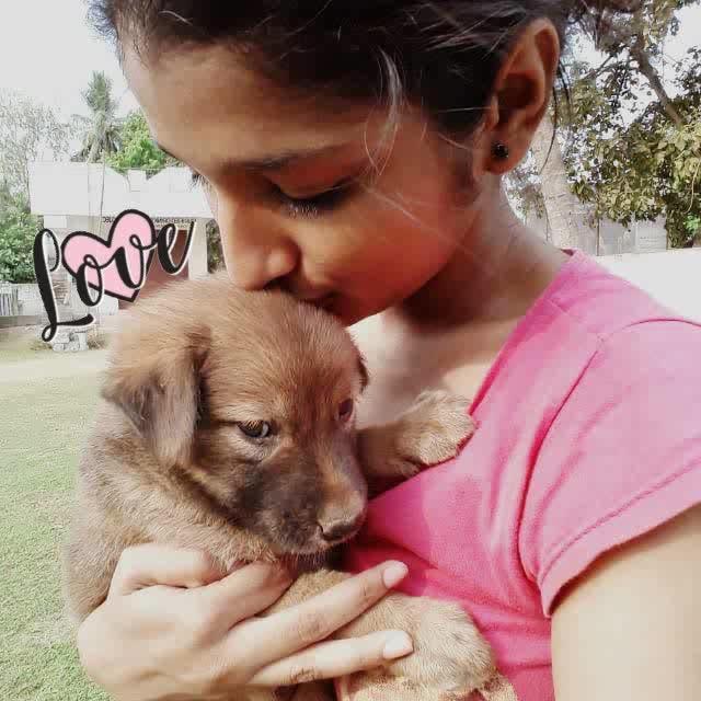 puppy love #my bae #coffee #love