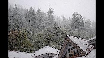#medianomics #rohtangpass #rohtang #snowfall