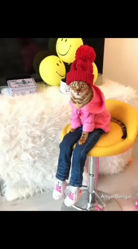 😁😁😁 #catgirl #cutelook