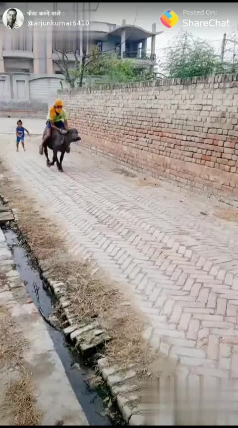 पेट्रोल महंगा होने के कारण #roposobikelover #haryana-punjab #indianstyle #indianjokes #roposo-funny #comedyclips #red-hot #new-style