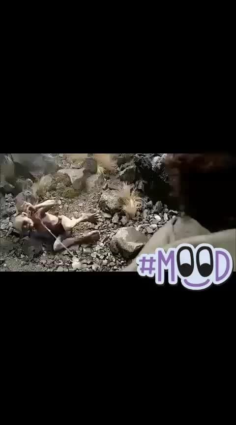 #haha #roposo-haha #haha-tv #hahatvchannel #haha_tv #roposo-funny