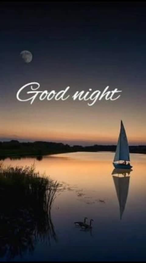 Good night friends...