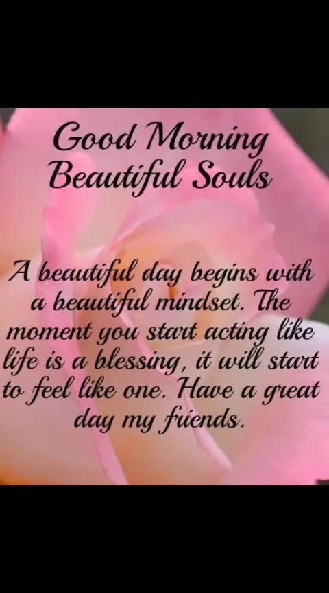 #beautifulmorning