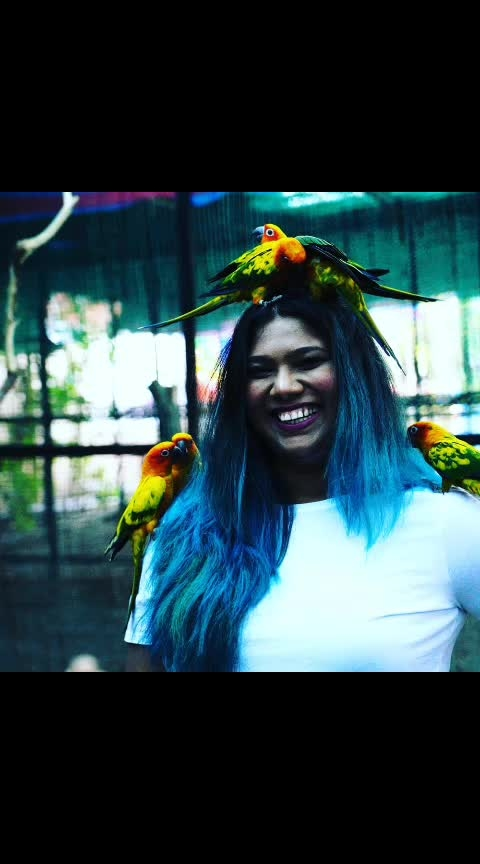 Happy me 😜😜😜😜   My experience at @silver_leaf_village was such an amazing and wonderful experience   Had some happy moments with these birdies 🐤🐤🐤  #snehal #birdpark #vapi #staycation #whitetshirt #happypuppy #happy #travelaroundtheworld #travellover #parrot #kokata #coloradosprings #bluehair #psstylist #pstravelbook #psootd #travelshrilanka #travelspain #travelspain #poser #naturetrail #naturelovers #gujarat #smile #smilebitch #influencer #pictures #fashion