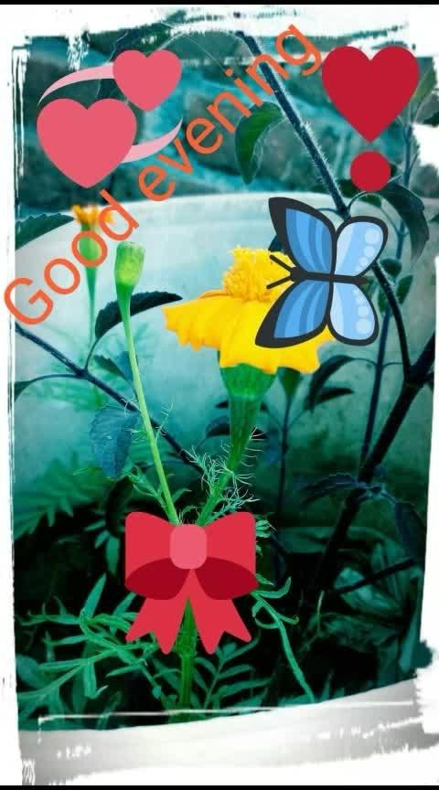 Good evening ho toh asia dekho ranbirangi #good  #goodmorning  #loveformakeup #funny_videos