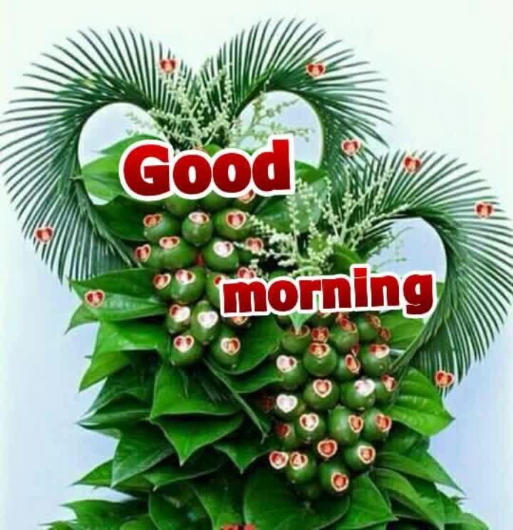 #goodnight #roposo-goodnight  #love #alltimehit #love----love----love #danjer #dancers# roposomen# tizonophotoworks #jump #jumping #jumpropevideos #omg💏💕 #omgcrazy #loveness #hitsongs #hotsong #loversuperb #newsupdates #2018best_song#loved it #love-with #loving... #loving  #loved it #for love.... #lovely day with lovely flowers #love-songs #love----love----love #lovestatusvideo #love_status #goodnight #roposo-goodnight #goodnightfriends #goodnightguys #romantic #romanticsong #romanticplace #romanticstatus love status...😘😘#love   #loveness   #love  #denim-love   #in-love-   #love_song   #solove   #love- #live   #love- #♥️love♥️  #love   #love 😘  #ropo-love   #in-love- #love👩❤️👨 #love-is-only-love  . #selie love...self love😍😘  #denim-love 😍😘  #love_status  #_love_status   #lovestatuswhatsapl   #love_status   #ropos-good-morning  #good-morning  #goodmusic  #oldsongs  #hitsongs  #hotsong  #loveyouguys  #singer  #status  #2018status #roposo-goodnight #goodnight #goodmusic #googly #goodnightfriends #goodeveningpost #good-night-guys #google #goodlooks #goodthings #good-morning-guys #good----evening #goooodmorningggggggg #bestsong #kick #roposo-comedy #comedy #comedi #comedy_video #comedy_view #fun ##funnyvideo #funnypost #fannyvideos #fann #jocks #jocker #jocker_fans #roposo-dance #dance_is_my_life #comedynight #love #love #pyarekdhokahai #stars