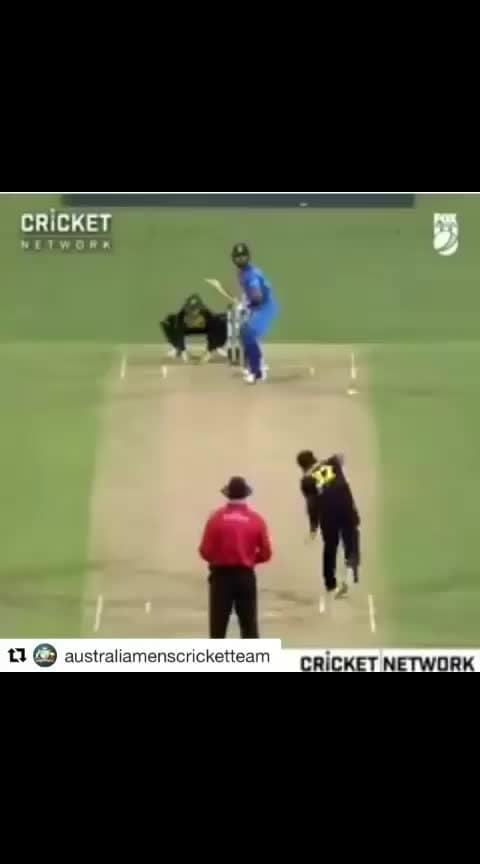 Meet The Star....No No, we are not talking about Kohli here 😊🙌🤣🙈 Footage courtesy @foxcricket  #Repost @australiamenscricketteam with @get_repost ・・・ Great hit from Kohli But what a catch from the security Guard #cricket #cmonaussie #ausvind