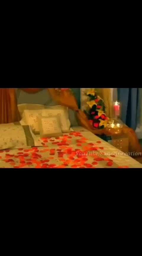 #romanticsongs  #shahidkapoor  #amritaarora  #vivaah