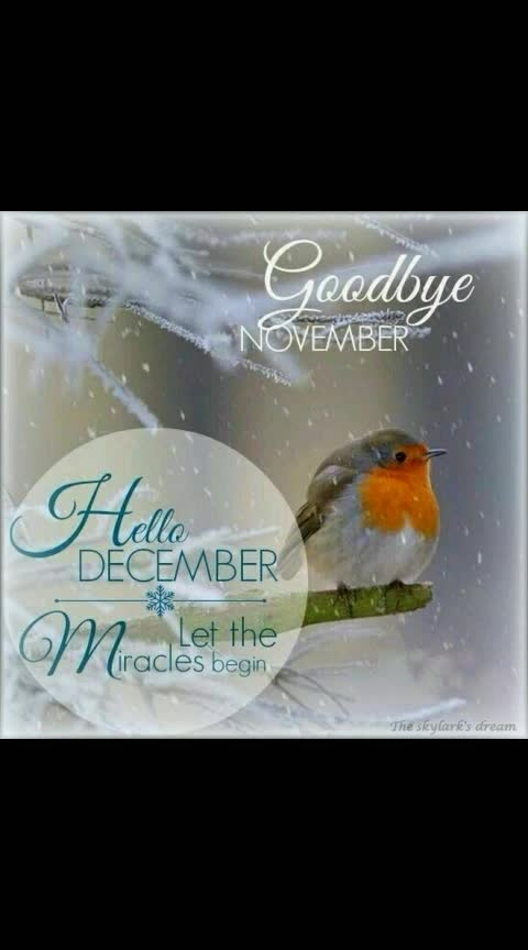 #december😍 #miracles😇 #magical #winter❤❤❤ #snow❄ #wintervibes #winterlove #coldweather💙😍❤ #wow