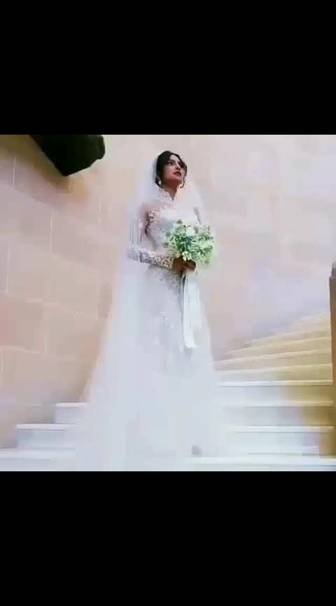 #nickyankawedding #nickjonas #priyankachopra #ummedpalace #jodhpur #congratulations #nickyanka #grandwedding #beautifulplace #lovelycouple #bollywoodwedding