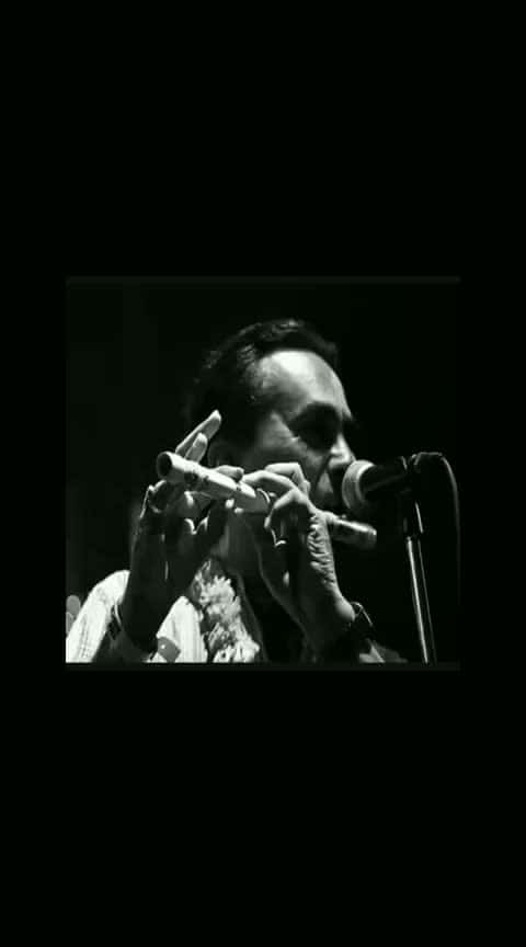 #music  #favourite  #peace  #flute  #classystyle   😍😍