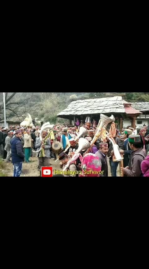 #himachalpradesh #kullumanali #himalayansurvivor