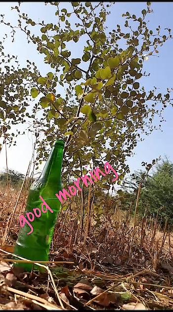 good morning #captured @kitti29585ca2  #sandeepmaheshwari #motivation #motivated  @kusumsirvi7  #politics  #political  #rahulgandhi  #namoindia  #namo_modi  #pappu_vai_ka_maja    #lovewhatyoudo #loveness #loveing #love-is-only-love #love-with #love----love----love #ro-love #-lovely #roposa-love #❤❤❤ ❤ 💲 love💲 💖💖💖💖💖 @roposocontests @roposotalks @roposobusiness @roposoroposo @roposodesignbox @roposo001 @coder@roposo @roposostar1 @roposostar03 @roposotv @kailash45bb3863 @kusumsirvi7 #haha-tv #haha #roposo-haha #haha-funny #roposo-hahahaha #hahahahaha    #lovewhatyoudo #loveness #loveing #love-is-only-love #love-with #love----love----love #ro-love #-lovely #roposa-love #❤❤❤ ❤ 💲 love💲 💖💖💖💖💖 @roposocontests @roposotalks @roposobusiness @roposoroposo @roposodesignbox @roposo001 @coder@roposo @roposostar1 @roposostar03 @roposotv @kailash45bb3863