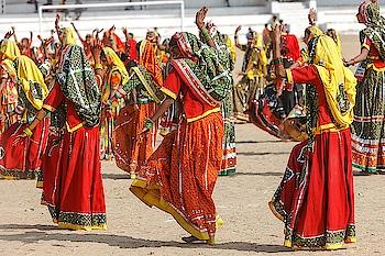 #pushkar  #camelfair #camels #rajasthantourism  #rajasthantour