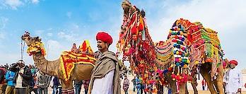 Camel festival in Rajasthan. Image Credit - https://colourfulindianholidays.com/ #camel #rajasthantourism #indian-festival #indiatourism #indiantourism