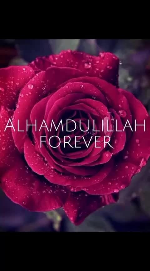 #roposopost  #islamicquotes  #islamicposts  #islamicthinking  #beauty of islam  #ropso-bhakhti